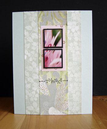 Pink-flowers-soage-backgrou