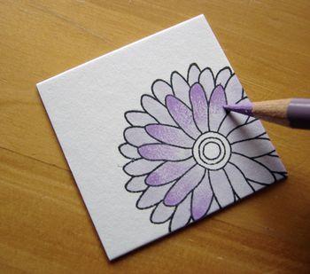 Lilac-prisma