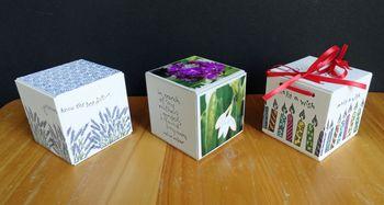 3-cubes