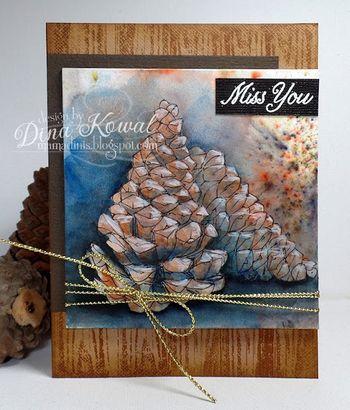 Dina pine cones