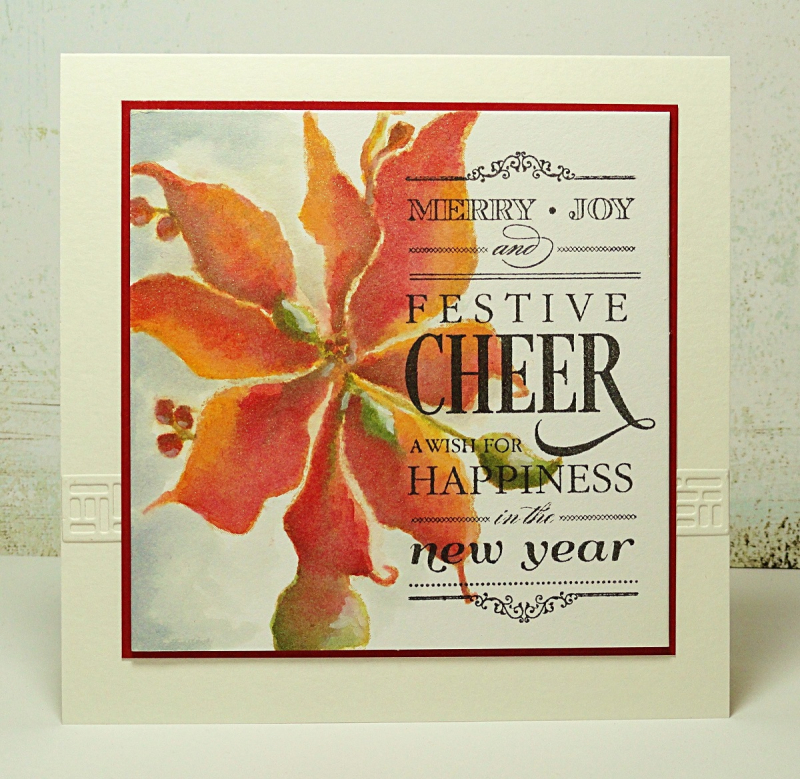 PB Festive Cheer